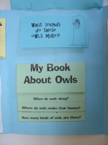 owl moon and unit study the home schoolhouse